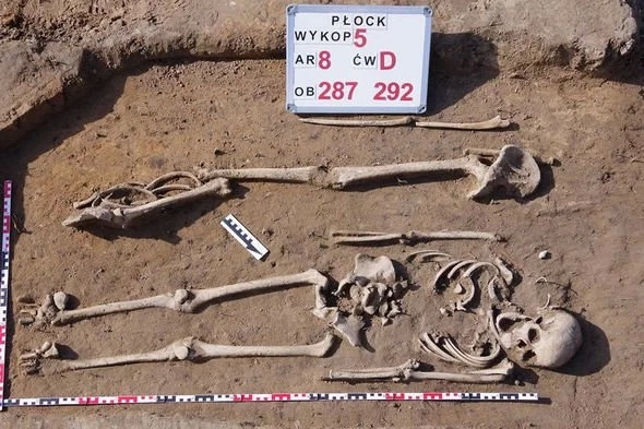 skeletons-medieval-cemetery-poland-archaeology