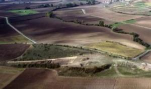 Medieval Spanish vineyards