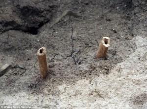 medieval monk leg bones