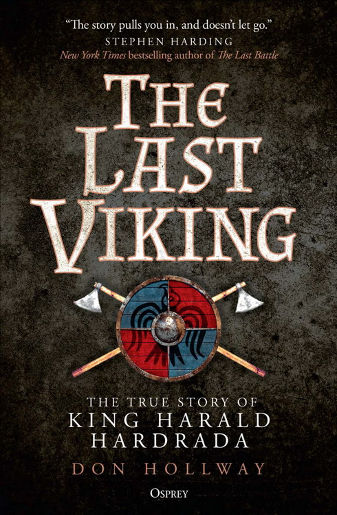 The Last Viking Cover